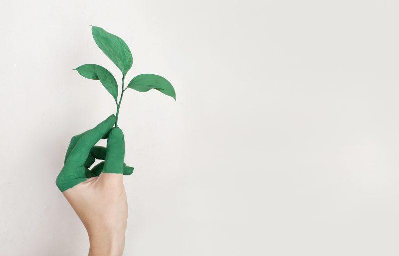 ¿Qué es una casa sustentable?