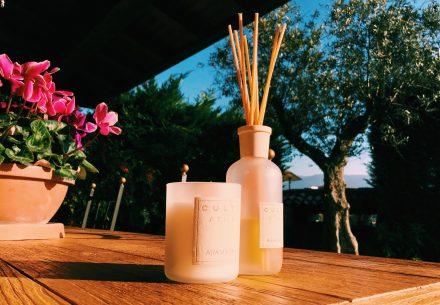5 Tips para mantener tu casa libre de malos olores